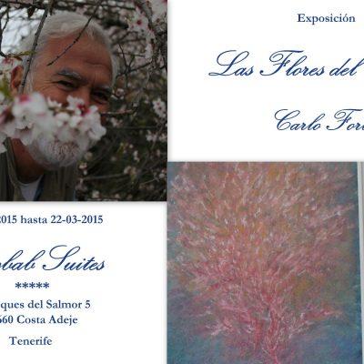 1) 2015 Las Flores del Alma BAOBAB SUITES